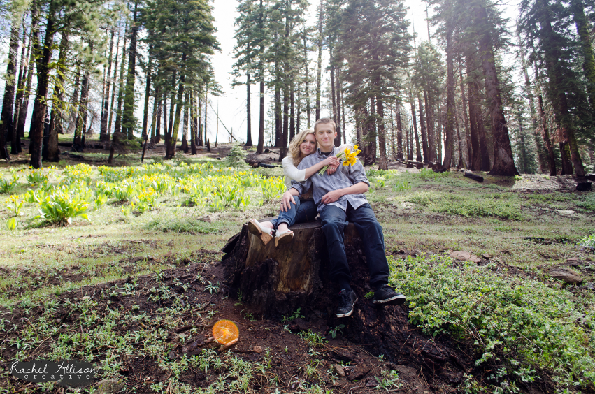 2013-tuolumne-forest-engagement