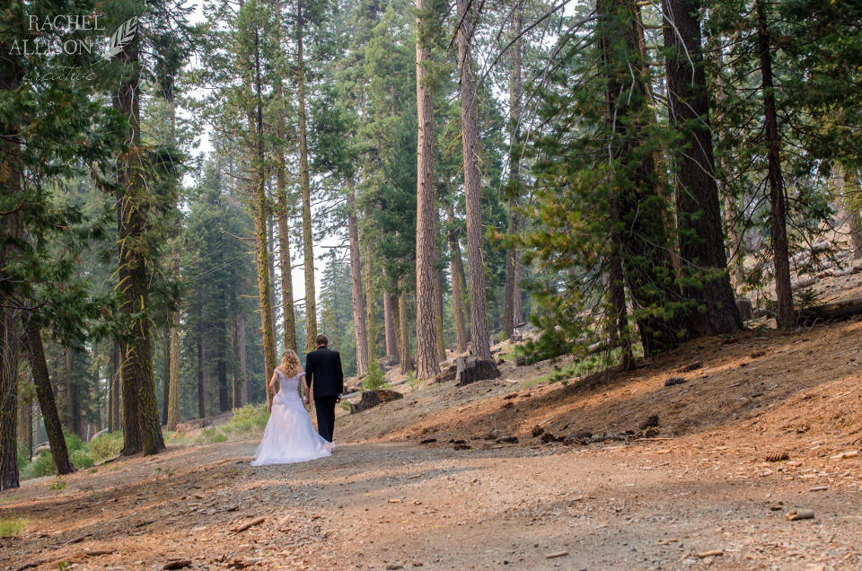 2013-Pinecrest-Forest-Wedding